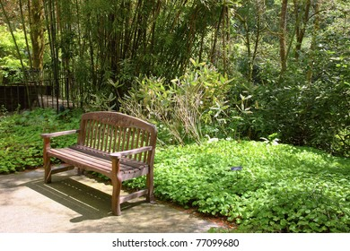 Outdoor bench & nature.