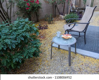 Outdoor breakfast in Arizona desert style xeriscaped backyard with crisp fresh air in early Spring morning