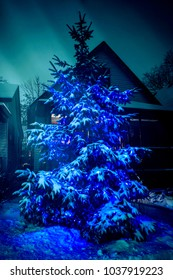 Outdoor Christmas Tree with Blue Lights