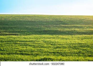 Outdoor countryside meadow grass nature. Rural grass field landscape. Background photography of natural summer landscape. Green lush grass field, nature concept. Agricultural grass field pastures