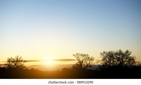 Outdoor countryside at sunset / sunrise. Silhouetted with trees and beautiful sky. Autumn / winter / summer landscape.