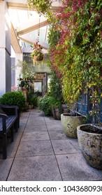 Outdoor deck garden