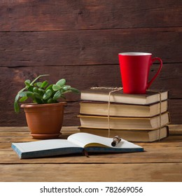 Outdoor Diary, Room Flower, Pile of Books, Red Cup with Coffee or Tea, Pen, Glasses on Wooden Background.