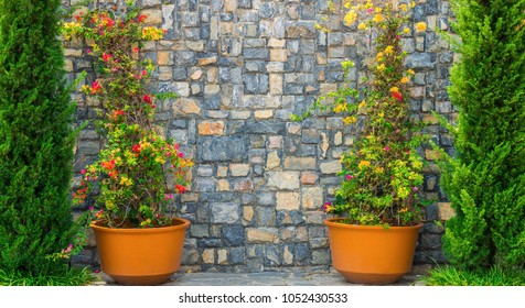 Outdoor exterior decoration nearby stone wall. It is designed and decorated in European style.
