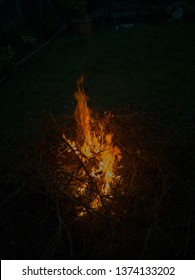 Outdoor fire of garden waste tree branches and clippings in a garden at early night time.