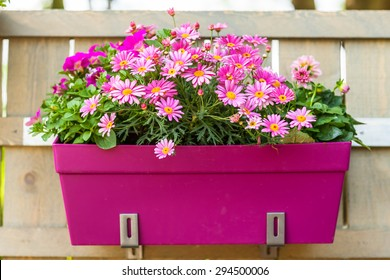 Outdoor flower pot hanging on wooden fence for small garden, patio or terrace