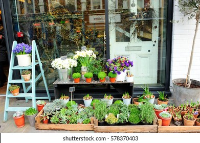 Outdoor Flowers and plants store in Shoreditch, London, England
