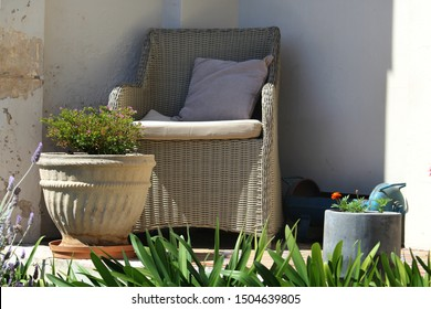 Outdoor furniture. A beige woven cane arm chair with cushions. Pot plants  and green foliage.