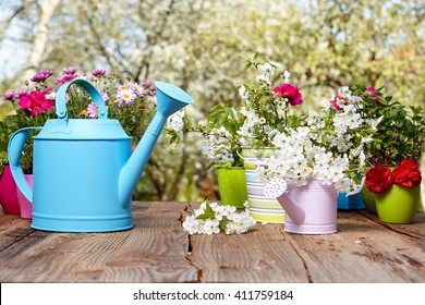 Outdoor gardening tools on old wooden table , Spring concept