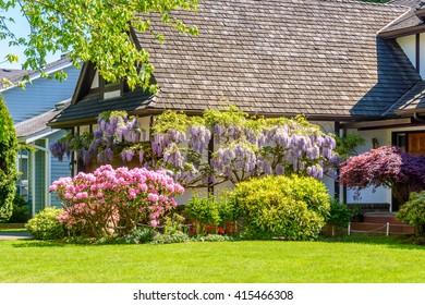 Outdoor landscape garden in North Vancouver, British Columbia, Canada.