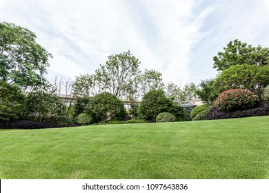 Outdoor lawn  on day