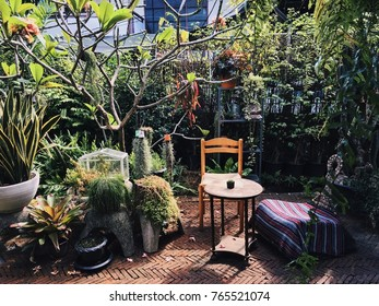 Outdoor living space is decorated in urban style with stylish ornaments. Garden is beautiful with many kind of plants. A table among the green tree make people feel relax.