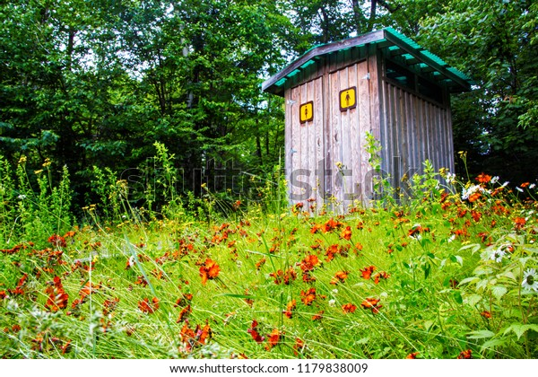 An outdoor long-drop toilet cubicle in Lake Superior National park, Ontario. Colourful wildflower and rich forest are surrounding the wooden building.