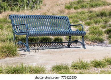 Outdoor metal bench in rural area. Green and dry grass.