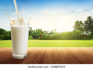 Outdoor nature background and milk pouring into glass