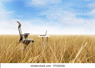 Outdoor office in a golden grass with a clear blue sky