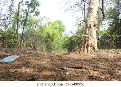 Outdoor Photography, Barvi Dam, Badlapur - Shutterstock ID 1487499968