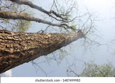 Outdoor Photography, Barvi Dam, Badlapur - Shutterstock ID 1487499983