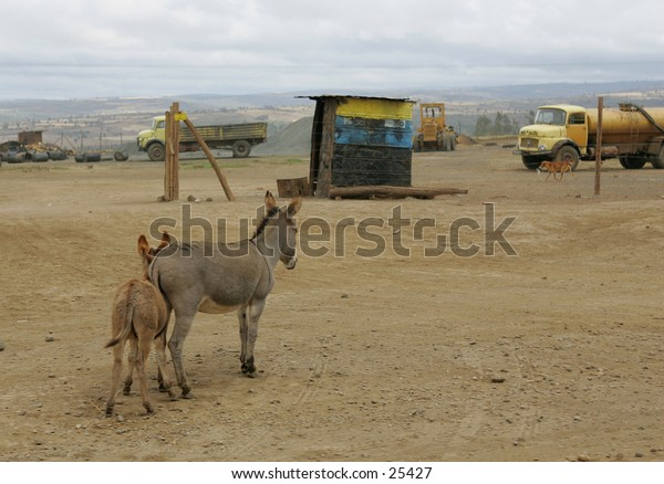 Outdoor Plumbing, water often transported by donkey