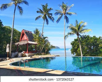 Outdoor pool with coconut trees