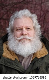 Outdoor portrait of smiling senior caucasian man against forest background. Close up face of stylish hipster with grey hair.