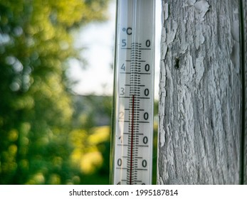 Outdoor red mercury, glass thermometer showing 31 degree of Celsius on warm summer day. Shallow depth of field.