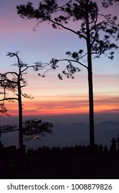 Outdoor scenic view of beautiful atmospheric twilight sunset sky at a cliff in Phu kradueng national park, Loei, Thailand crowded with visiting tourists and silhouette pine trees as foreground