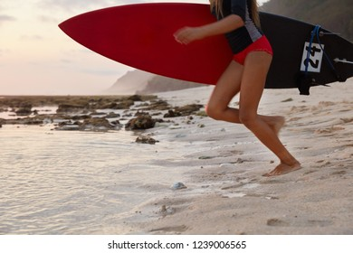 Outdoor shot of active fitness girl carries surfboard, prepares for surfing trip, stands on sandy beach near water, wears divingsuit, being free surfer, wants to demonstrate duck diving. Summer time