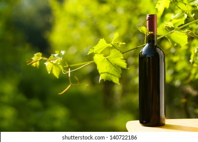 Outdoor shot of a bottle of red wine in the vineyard