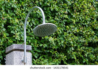 Outdoor shower head with green leaf background beside swimming pool.