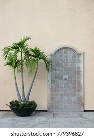 Outdoor shower and a potted palm tree
