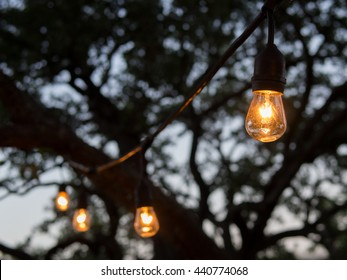 Outdoor string lights hanging on trees