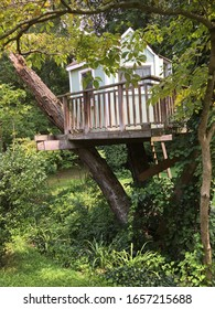 outdoor tree house with fence around it with ladder surrounded by nature back ground