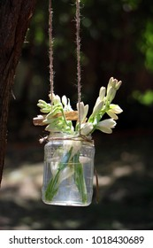 outdoor tuberose decoration