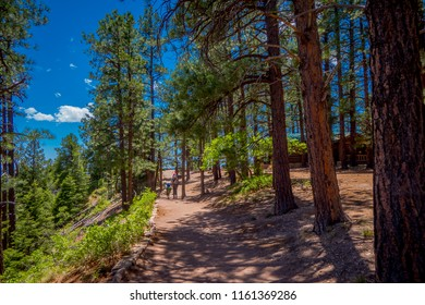 Outdoor view of family of tourists walking on a sand path in South Rim trail of Grand Canyon, Arizona