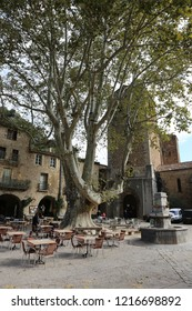 Outdoor view of the main square of saint guilhem le désert village, in hérault departement, occitanie region, France. October, 30, 2018. High plane tree near gellone abbey. Medieval architecture..