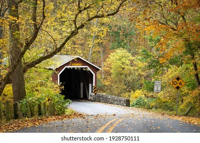 The outdoor view of the red covered bridge inside of the forest in the daytime