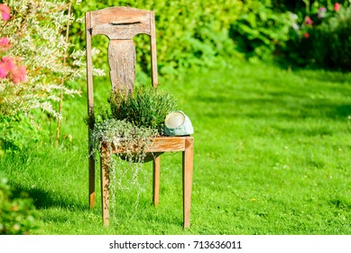 Outdoor vintage chair recycled or up cycled as flowerpot in garden.
