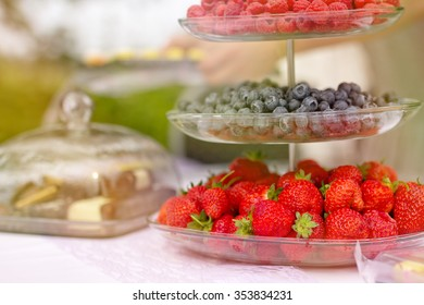 Outdoor wedding day in the old greenhouse - fresh fruit dishes with various types of berries on the white tablecloth with the nature background