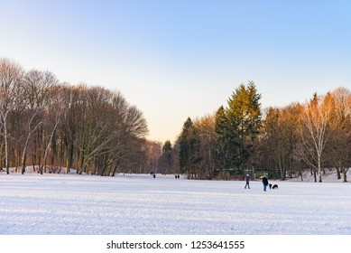 Outdoor winter scenery snowy landscape of Volkspark Rehberge, Goethe Park and Rathenaubrunnen in Wedding district, in Berlin, Germany. People and dogs relax and walk on snow in forest.