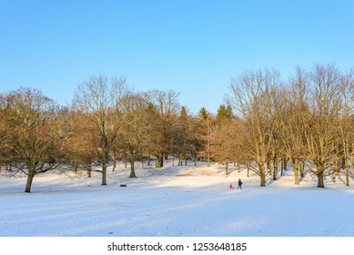 Outdoor winter scenery snowy landscape of Volkspark Rehberge, Goethe Park and Rathenaubrunnen in Wedding district, in Berlin, Germany. Parent drag kid who sit on ski skiing on snow in forest.