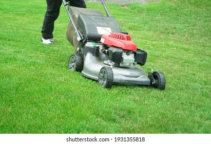 outdoor worker working on mowing the lawn