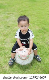 Outdoor zooming closeup view of a young lovely charming little Asian boy baby dresses in black and white riding a smiling sheep rock in a green grass field