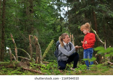 Outdoors with Kid in forest showing things