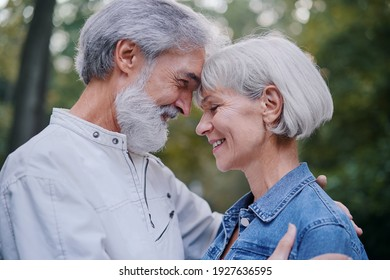 Outdoors portrait of happy elderly couple embracing in summer park.