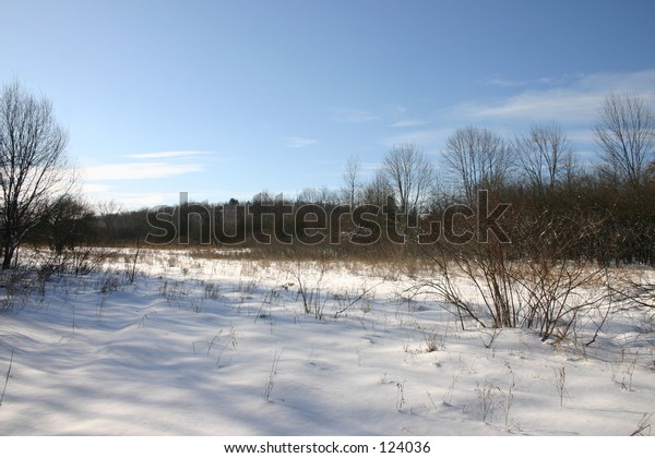 outdoors in the snow