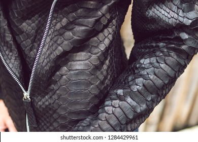 Outdor fashion portrait of young woman wearing trendy snakeskin python luxury jacket.