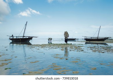 Outflow of ocean on the island of Zanzibar, Tanzania. Locals gather seafood. Ocean landscape