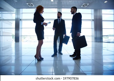 Outlines of group of white collar workers interacting on background of office window