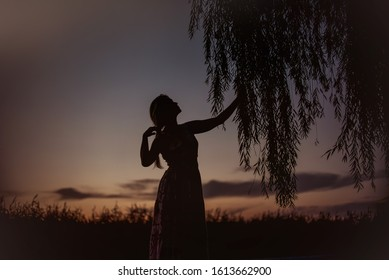 the outlines of a slender girl standing by a lonely willow